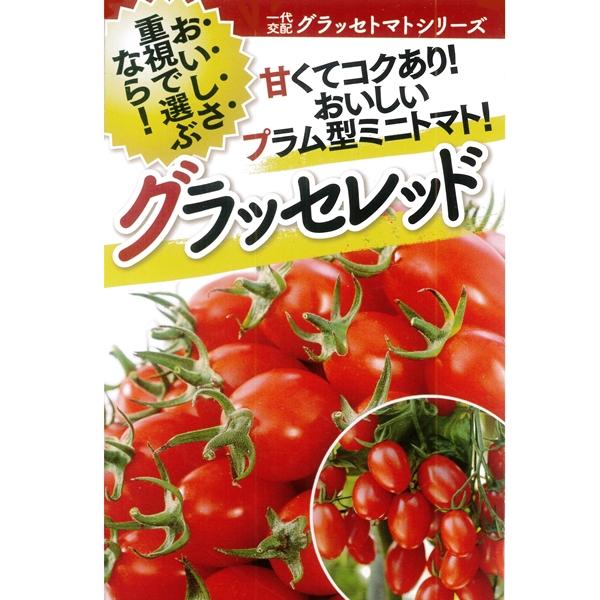 トマト(ミニトマト) 種 【グラッセレッド 1000粒】