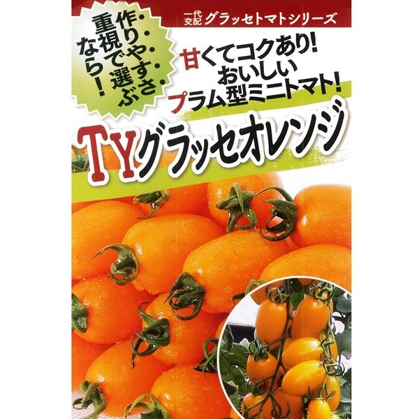 トマト(ミニトマト) 種 【TYグラッセオレンジ 1000粒】