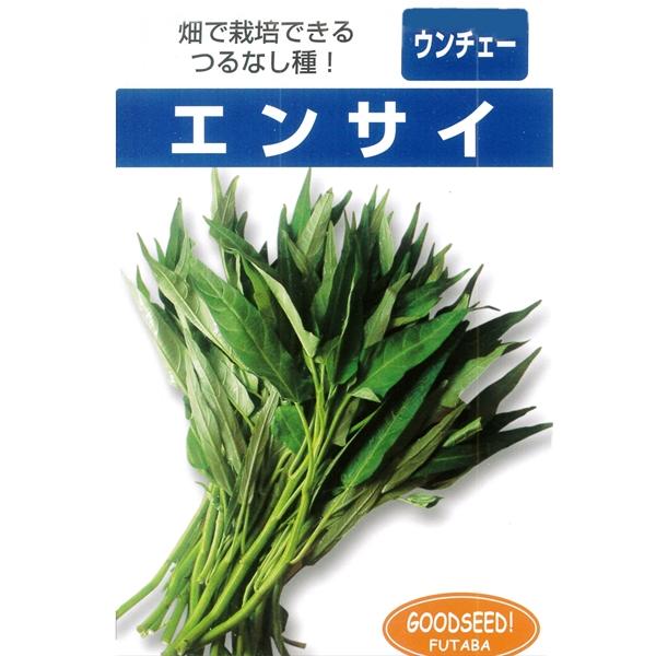 畑で栽培できるつるなし種 葉野菜 豪華な 種 つるなしエンサイ 1リットル 送料¥1000 ※2袋以上御購入で宅配便 代引き不可