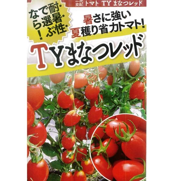 トマト(ミニトマト) 種 【TYまなつレッド 1000粒】
