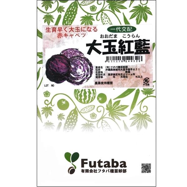 葉野菜(キャベツ)種子 【大玉紅藍 5000粒ペレット】