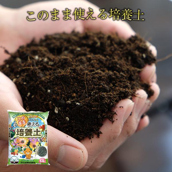 65センチプランター1個分、7号鉢で約5鉢分 園芸 ガーデニング 送料無料 簡単 花の土 培養土 ふたば 放射能測定  このまま使える 培養土 14L 花と野菜の土 ガーデニング バーク堆肥 放射能測定 ふたばの土 プランターの土 送料無料