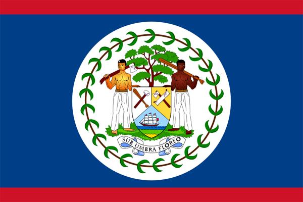 【外国旗】ベリーズ国旗(アクリル) サイズ:90×135cm【領収書発行】