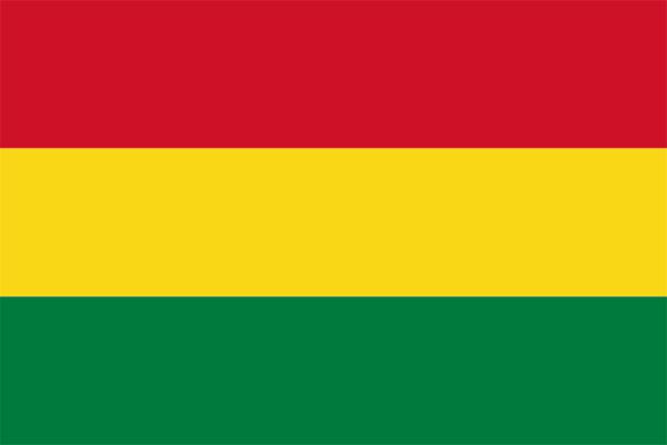 【外国旗】ボリビア多民族国国旗(アクリル) サイズ:90×135cm【領収書発行】