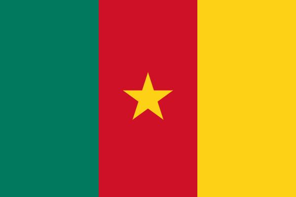 【外国旗】カメルーン共和国国旗(テトロントロピカル) サイズ:90×135cm【領収書発行】