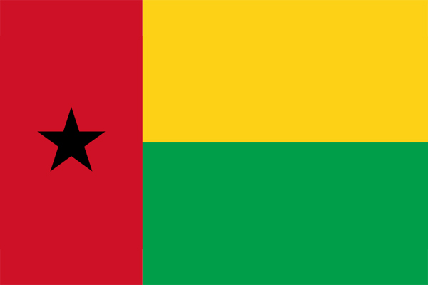 【外国旗】ギニアビサウ共和国国旗(テトロントロピカル) サイズ:90×135cm【領収書発行】