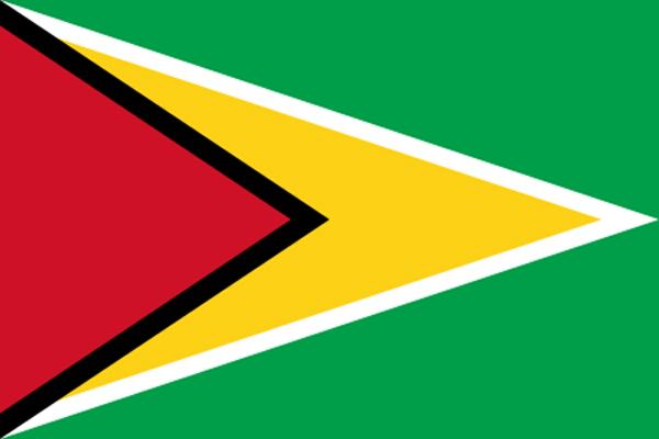 【外国旗】ガイアナ共和国国旗(アクリル) サイズ:90×135cm【領収書発行】