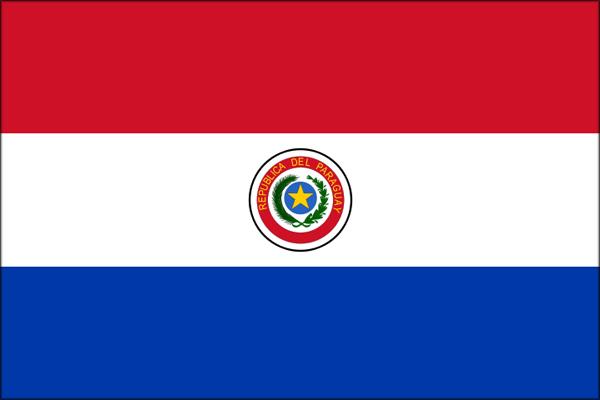 【外国旗】パラグアイ国旗(アクリル) サイズ:90×135cm【領収書発行】