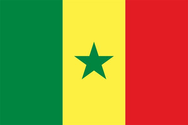 【外国旗】セネガル共和国国旗(アクリル) サイズ:90×135cm【領収書発行】