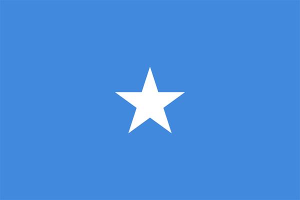 【外国旗】ソマリア民主共和国国旗(アクリル) サイズ:90×135cm【領収書発行】