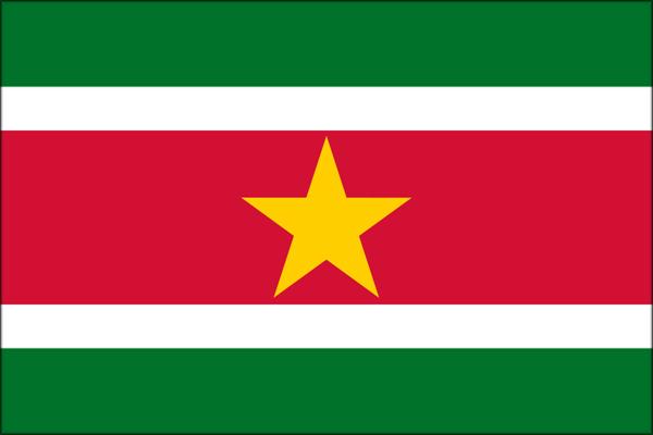 【外国旗】スリナム共和国国旗(アクリル) サイズ:90×135cm【領収書発行】