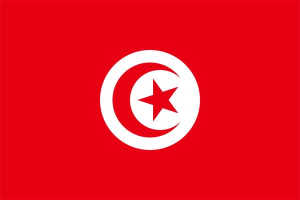 【外国旗】チュニジア共和国国旗(アクリル) サイズ:90×135cm【領収書発行】