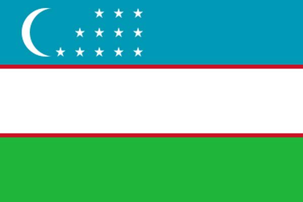 【外国旗】ウズベキスタン共和国国旗(アクリル) サイズ:90×135cm【領収書発行】