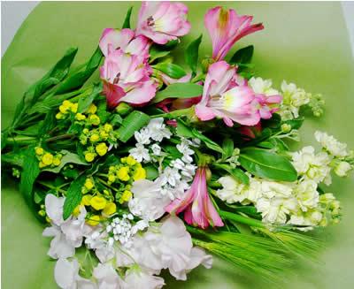 お花の定期便 買収 定番 ^o^