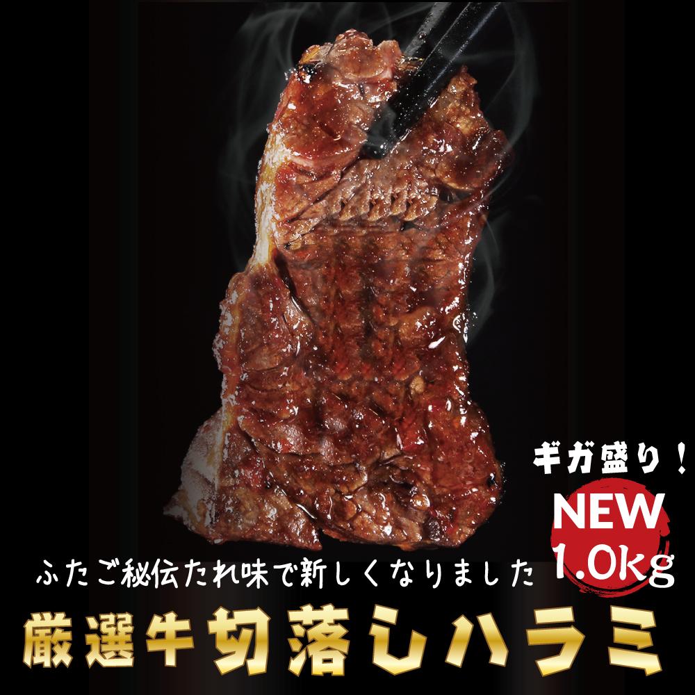 メガ盛り1.0kg肉厚 ボリューム満点 柔らかふたご秘伝だれのジューシーハラミが登場 ハラミ 送料無料 ふたご秘伝だれがクセになる 在庫処分 ふたごの厳選牛ハラミ 本日限定 1.0kg 焼肉 セット お取り寄せ 肉 バーベキュー おうちで食べよう