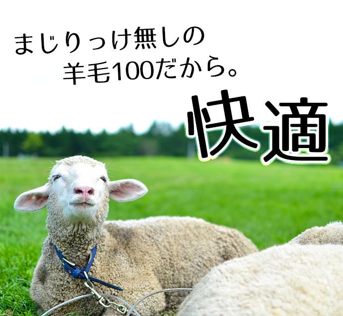 橡皮布耐洗毛毯挂床 70 × 185 厘米可水洗的澳大利亚公司生产的高质量羊毛毯子 !一条毯子挂羽绒被可机洗全毛 100%木桐蓬松和温暖 !) 100%羊毛