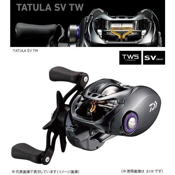 ダイワ タトゥーラ SV TW 8.1R