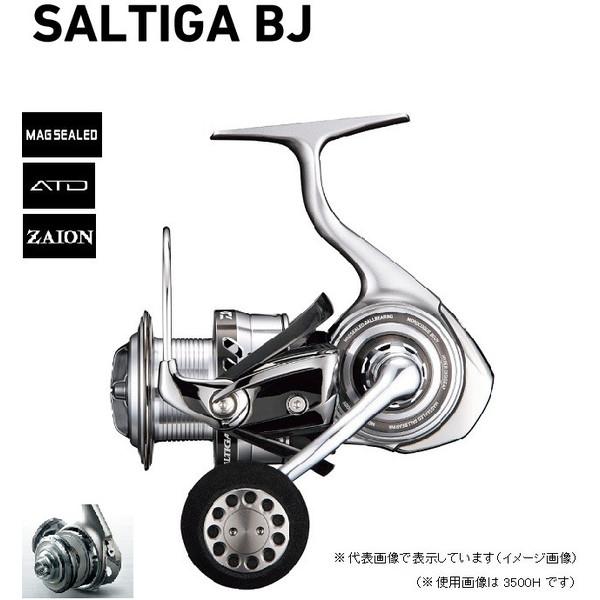 ダイワ 17ソルティガ BJ4000SH
