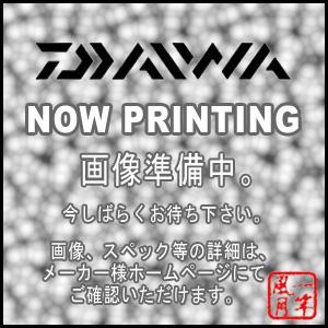 DAIWA(ダイワ)/STEEZ(スティーズ) STZ 661MHRB-XTQ【送料無料】【ブラックバス】【バスロッド】