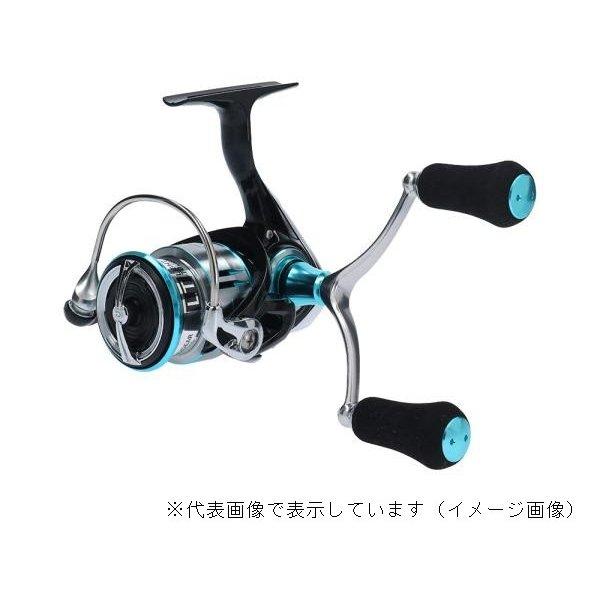 ダイワ 19EME LT2500S-H-DH
