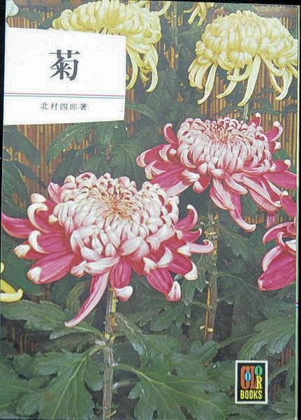 【中古】【保育社 カラーブック「菊」著者:北村 四郎】中古:ほぼ新品40