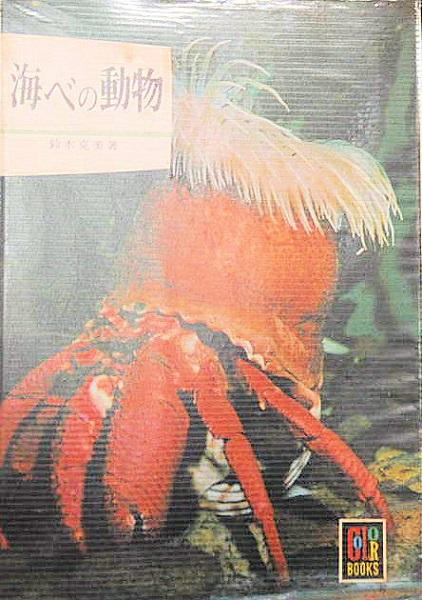 中古 保育社 新着 カラーブック 海べの動物 中古:ほぼ新品174 全品最安値に挑戦 著者:鈴木克美