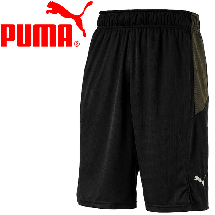 puma energy senegal