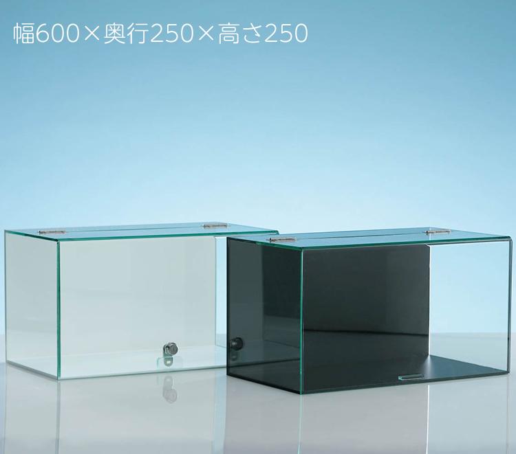大型模型などに最適 大切なコレクションを美しく保存できます アクリルケース インテリア 日本 ディスプレイ フィギュア 大型 模型 透明 長方形 コレクションケース幅600x奥行250x高さ250 No.622カギなし 背面用ミラー付 什器 ガラス調アクリル板使用 ウイング式 mm アクリル お洒落