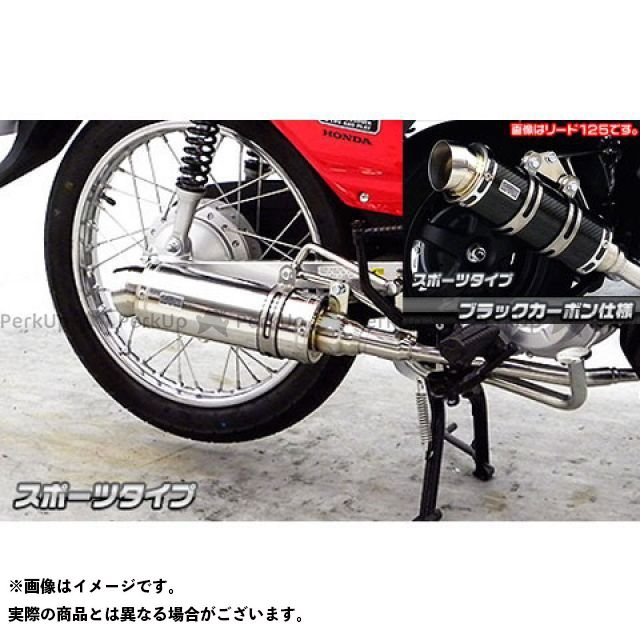 ウイルズウィン クロスカブ110 クロスカブ(JA10)用 ロイヤルマフラー スポーツタイプ オプション:オプションB+C WirusWin