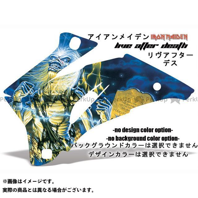 AMR ニンジャZX-10 専用グラフィック コンプリートキット デザイン:アイアンメーデンリブアフターデス デザインカラー:選択不可 バックグラウンドカラー:選択不可 AMR Racing