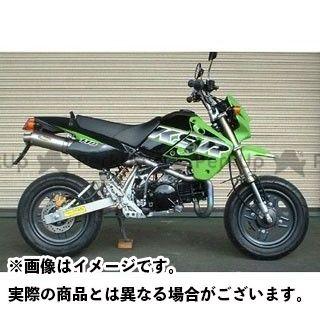 【無料雑誌付き】ノジマ KSR110 FASARM M TITAN JMCA NOJIMA