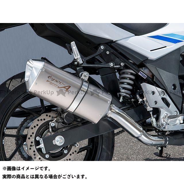 ヤマモトレーシング GSX250R 17~GSX250R SPEC-A SLIP-ON TYPE-SA YAMAMOTO RACING