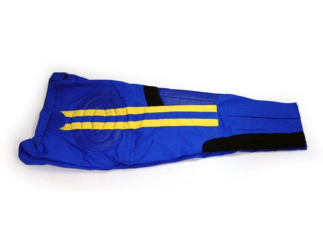 REIGN レイン モトクロス用品 Swede MX パンツ(ブルー) 32インチ