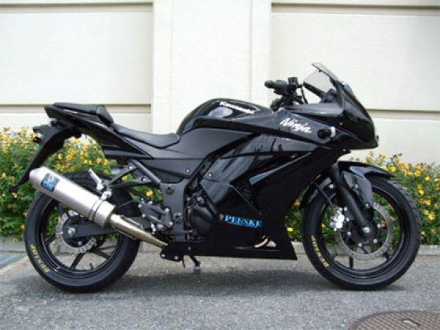 魅力の PENSKE ニンジャ250R マフラー本体 Ninja250R ニンジャ250R マフラーSTD PENSKE マフラーSTD, ニシワキシ:6b523be9 --- hortafacil.dominiotemporario.com