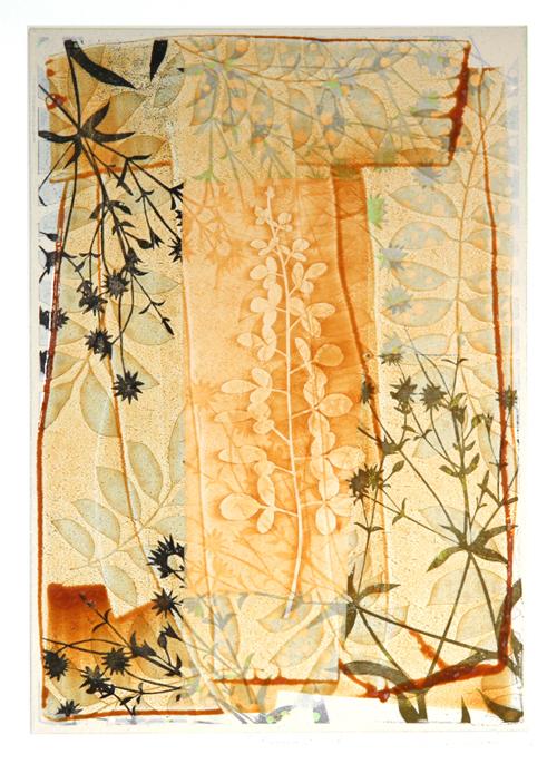 絵画 版画(銅版画・リトグラフ・木版画・シルクスクリーン版画) レリーフ オブジェ 書など、現代アートの専門サイト 版画/油性木版、コラージュ、手彩 白駒一樹 T-Garden2012-08