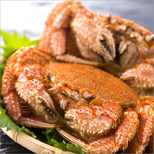 ■北海道グルメ - 北のデリシャス>◆北海道 海の幸(カニ・水産物)>毛ガニ>毛ガニ(冷蔵商品)>1尾 500gサイズ