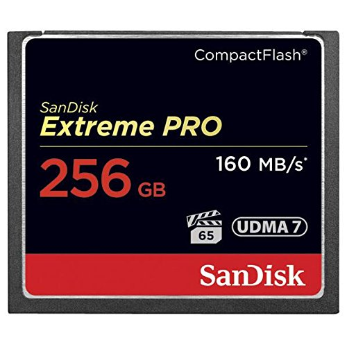 【新品】SANDISK SDCFXPS-256G-J61 [256GB]