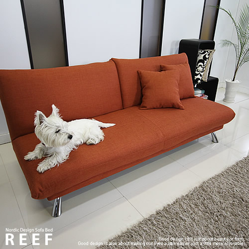 The Scandinavian modern, up-and-coming designer sofa bed coil spring semi  sofa two seat single sofabed REEF