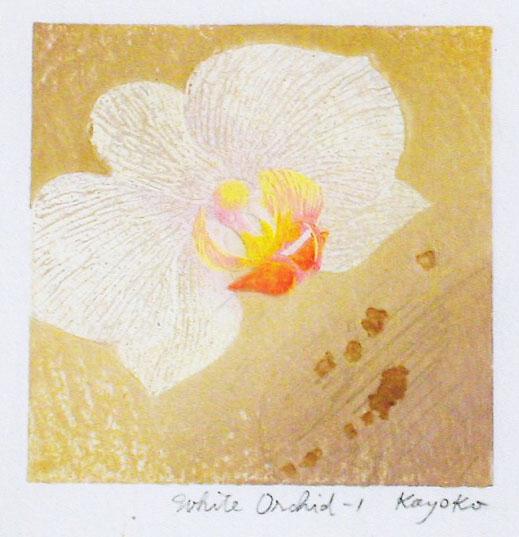 白いらん - 1White Orchid - 1:宮山 加代子