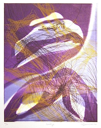 北方の光 エクトール Nordlys ソニエ エクトール Nordlys ソニエ, 全商品オープニング価格!:92304992 --- sunward.msk.ru