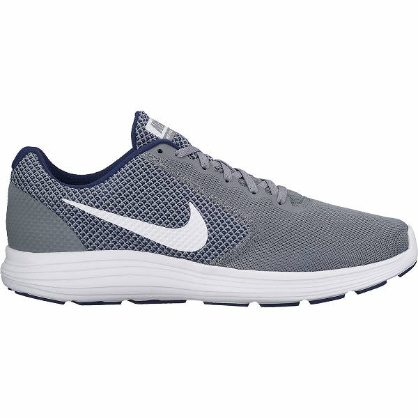 ○17HO NIKE (Nike) revolution 3 819,300-019 men's shoes