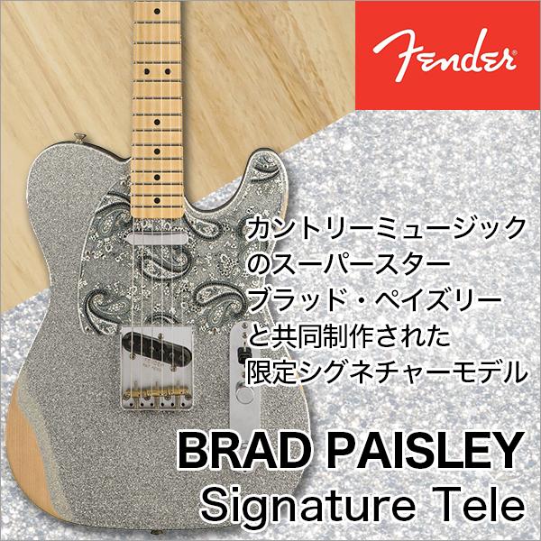 【1月のお買い得品】Fender/Brad Paisley Road Worn Telecaster Silver Sparkle【フェンダー】