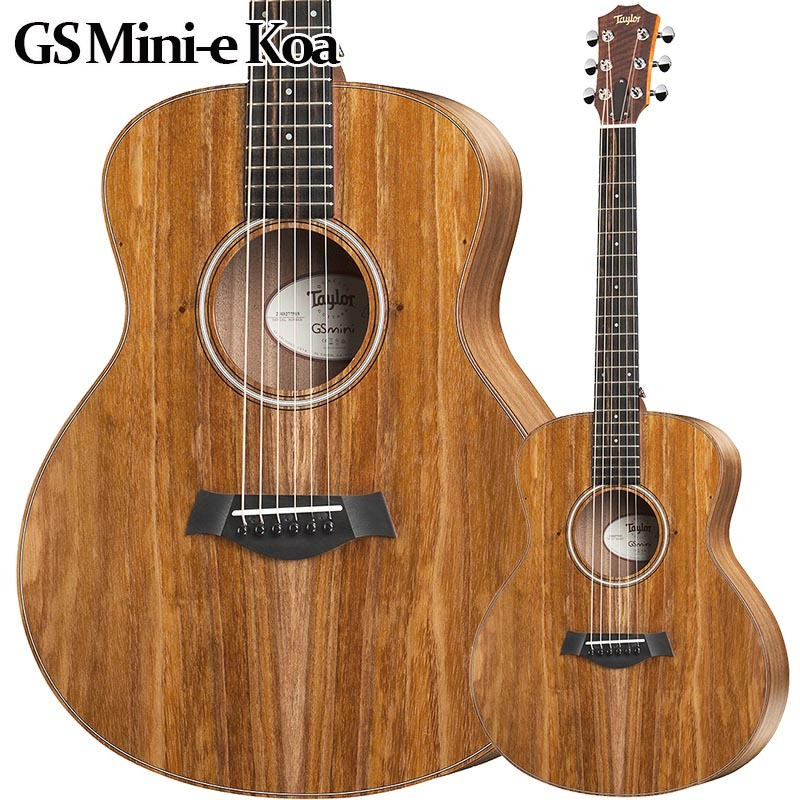 Taylor/GS Mini-e Koa エレアコ 【テイラー】