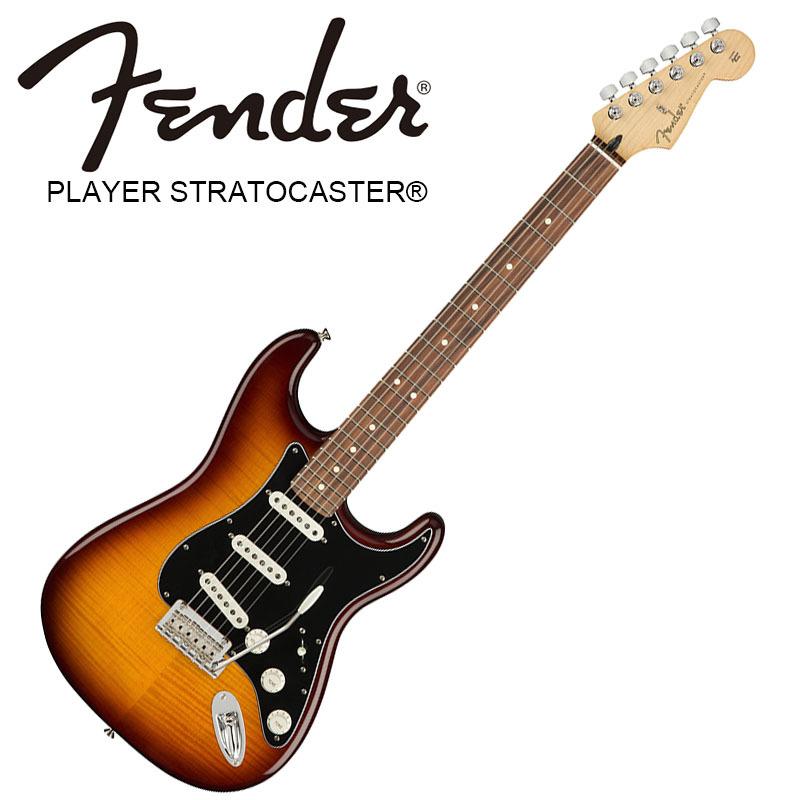特価ブランド Fender Fingerboard Plus Player Stratocaster Plus Top Fender Tobacco Burst Pau Ferro Fingerboard【フェンダーストラトキャスター】【正規輸入品】, RAY ONLINE STORE:3260c8cb --- todoastros.com
