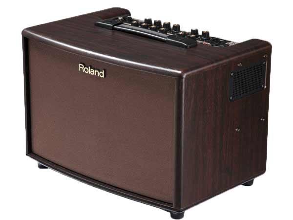 Roland ( ローランド ) AC-60-RW (ローズウッド調)【エレアコ専用 アンプ】