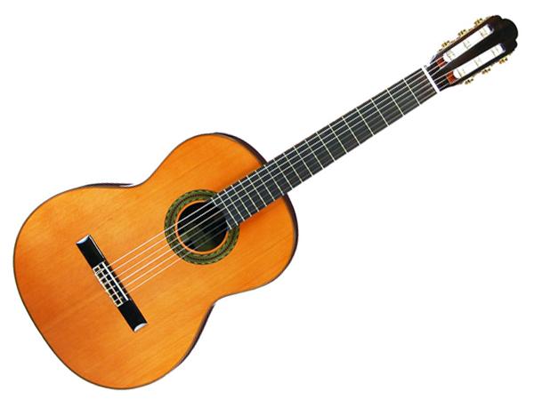Aria ( アリア ) A-100C クラシックギター ☆ GIG BAG付き【A-100C】