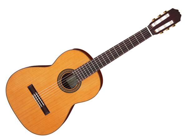 Aria ( アリア ) ACE-5C クラシックギター ☆コンサートシリーズ GIG BAG付き