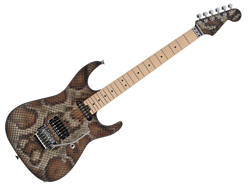 Charvel ( シャーベル ) WARREN DEMARTINI SIGNATURE SNAKE 【受注生産品】
