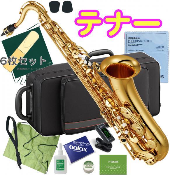 この価格在庫限り YAMAHA ( ヤマハ ) YTS-380 テナーサックス 新品 管楽器 サックス 管体 スタンダード 本体 テナーサクソフォン 【 YTS380 セット B】 送料無料