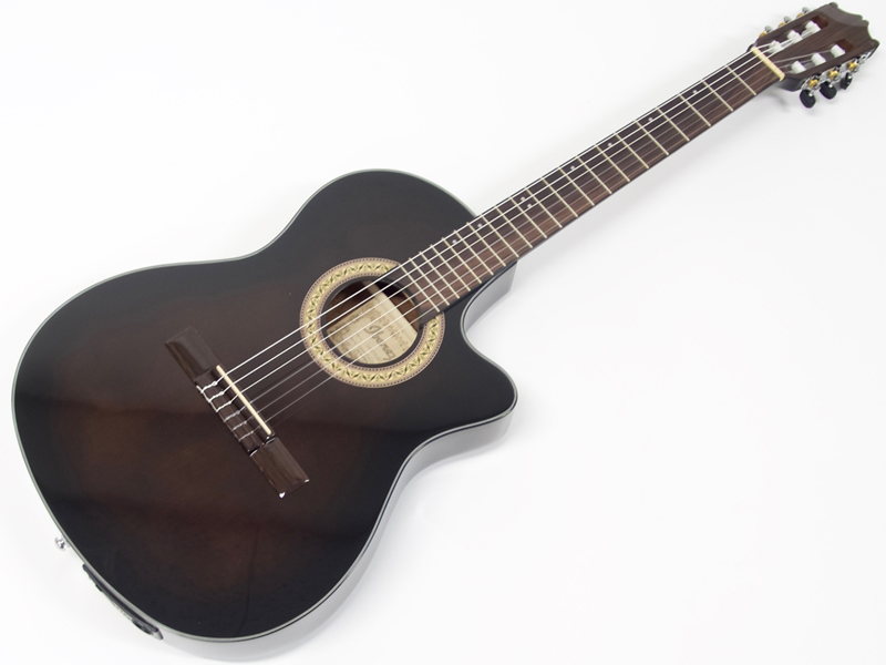 Ibanez ( アイバニーズ ) GA30TCE DVS【限定特価】【 エレガット クラシック ギター 】【新春特価! 】